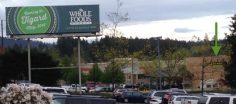 "Is ""Evil Empire"" in the Whole Foods Brand Brief?"